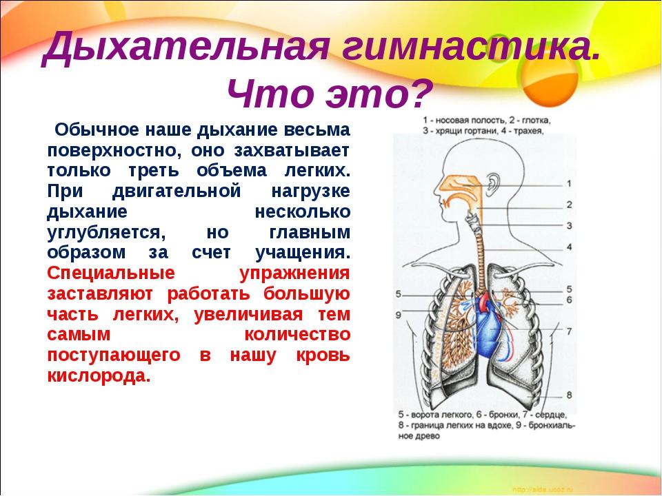 Упражнения дыхательной гимнастики для сердца и сосудов - на ...