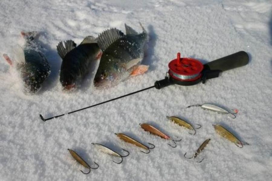 Снасти для зимней рыбалки фото