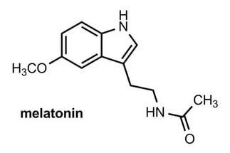 что такое мелатонин