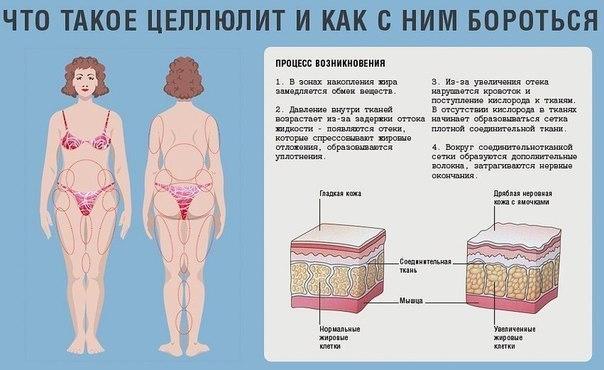 Никотиновая кислота при похудении