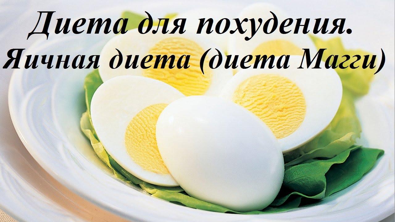 Яичная диета Магги  roxellycom