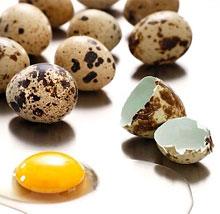 Перепелиные яйца при кисте на почках