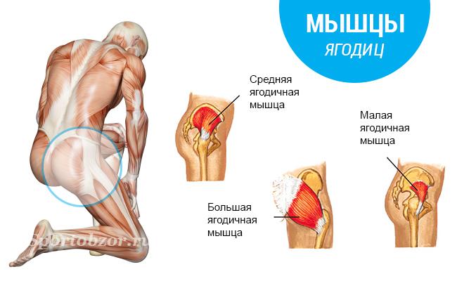 как похудеть и накачать мышцы одновременно мужчине