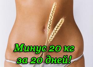 Как похудеть за 20кг за 20 дней отзывы