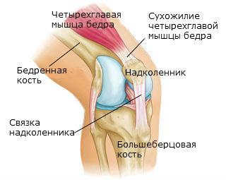 Сильное растяжение коленного сустава чем лечить артрит локтевого сустава в домашних условиях