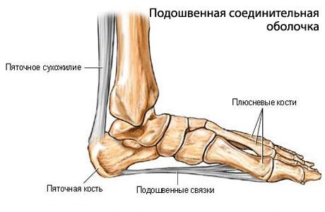 Биопрогревающая система для лечения коленного сустава