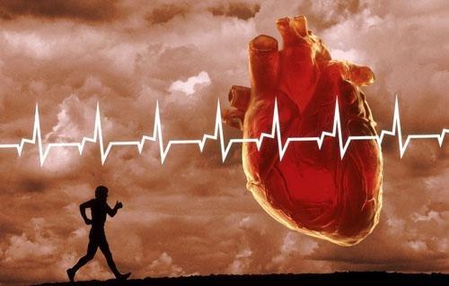 схемы кардиотренировок для