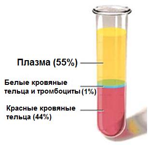 Обогащенная тромбоцитами плазма