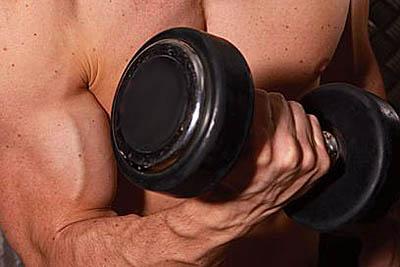 программа занятий в спортзале для похудения