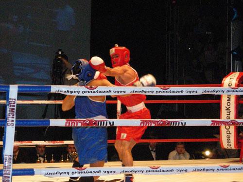 Кубок России по боксу, кикбоксингу и тайскому боксу