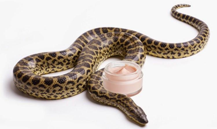 Мази со змеиным ядом название. Мази со змеиным ядом эффективные средства, инструкция по их применению, отзывы