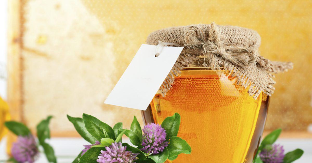 Клеверный мед полезные свойства и противопоказания