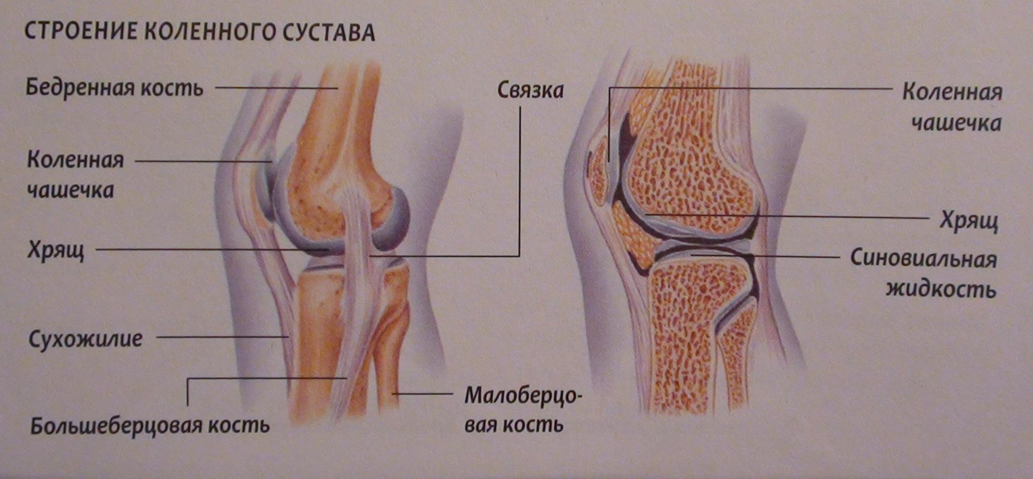 Болит колено долго в одном положении
