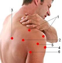 Болит дельтовидная мышца плеча: лечение, причины