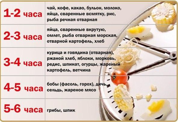 А вы знаете сколько переваривается пища в вашем желудке