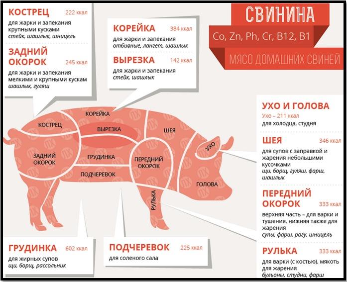 Мясо для шашлыка: какое лучше, как выбрать для приготовления