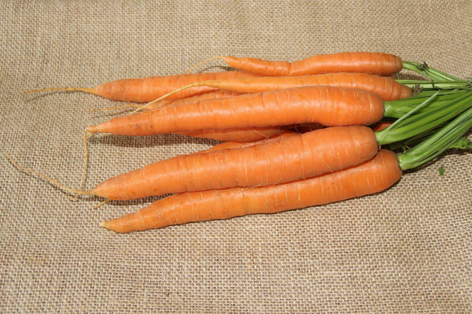 слова морковь фото в хорошем качестве крупным планом даже уверен