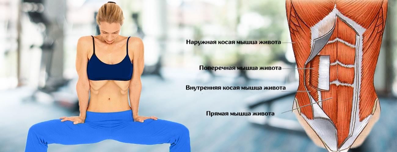 какие мышцы работают упражнения вакуум фото очень рада