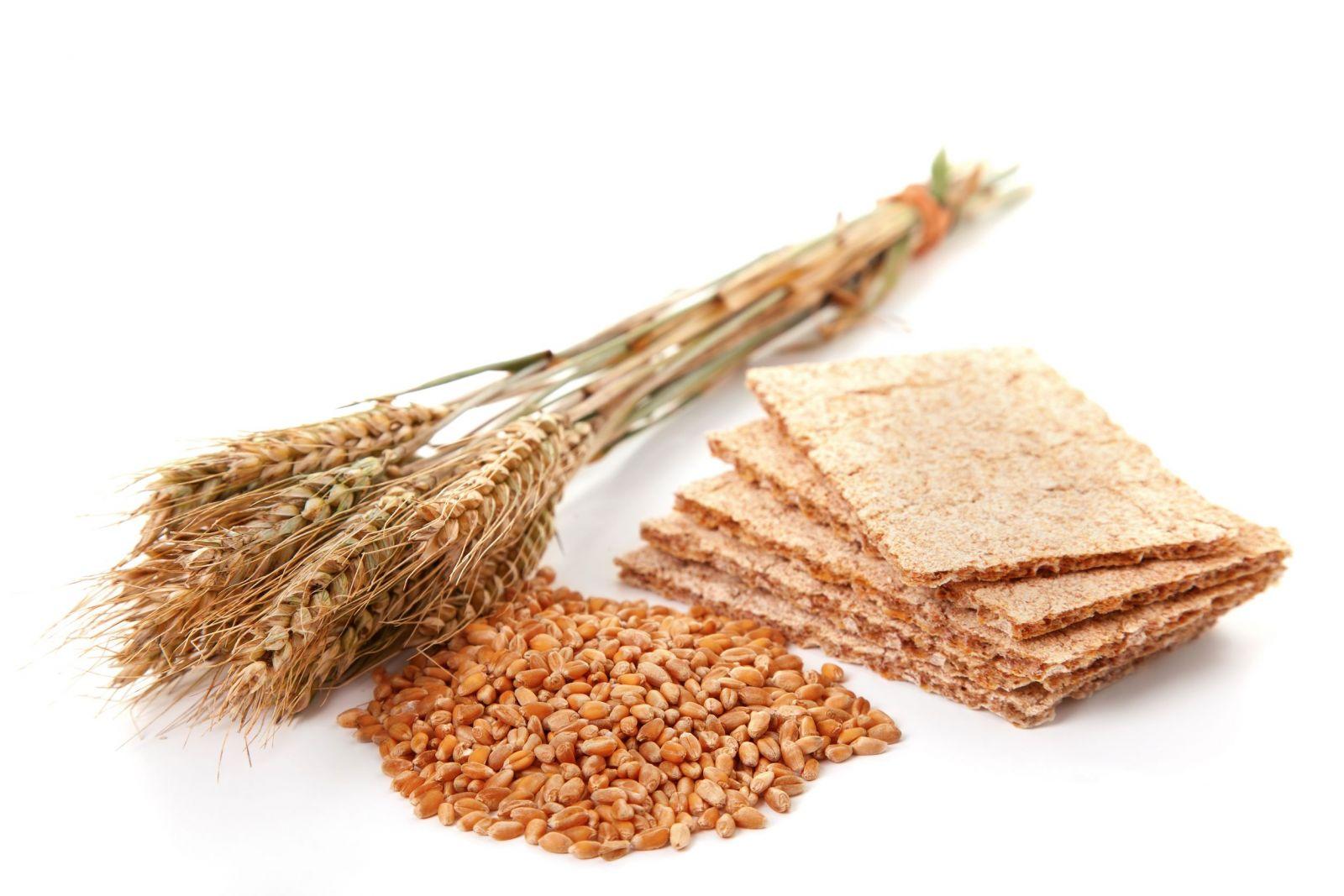 Грубые пищевые волокна где содержатся
