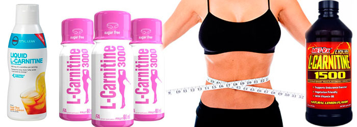 прием карнитина при похудении