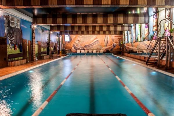 Бассейн, соревнования по плаванию среди пенсионеров перед новым 2017 годом